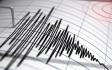 Două cutremure cu magnitudinea de peste 3 înregistrate , în mai puțin de o oră, în România