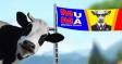 Pentru Primaria Bragadiru,  un candidat copy-paste