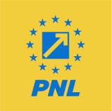 Cine este noul șef al organizației PNL București și câte voturi a obținut