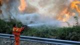 Italienii cer disperați ajutor. Incendiile nu mai pot fi ținute sub control în Sardinia