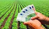 Tinerii fermieri care pot primi până la 50.000 de euro