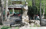 Reabilitarea parcului Cismigiu nu presupune taierea copacilor sanatosi .Membrii USR, incearca intoxicarea cu zvonuri a populatiei