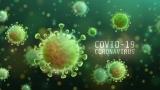 Virusul mutant face ravagii  în Marea Britanie