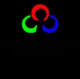 www.ziarulatak.ro PARTIDA ROMILOR PRO EUROPA COMUNICAT DE PRESA 21.11.2019
