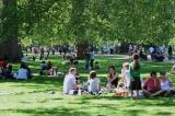 Picnic de pandemie: În Londra, sute de persoane au ieșit la pizza și bere într-un parc