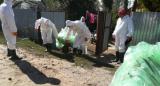 www.ziarulatak.ro În prag de sărbători se închid focarele de pestă porcină africană din 8 localități din județul Giurgiu