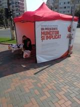 Corturile de campanie ale Vioricăi Dăncilă, vandalizate