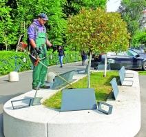 Zi de zi  Totul Verde continuă operațiunea de curățenie intre  blocurilor