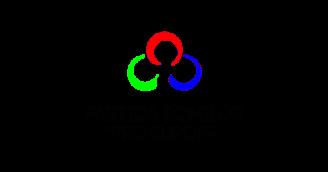 partida-romilor-pro-europa-comunicat-48192-1.png