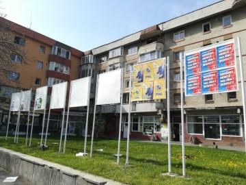 Partidele și candidații la alegerile locale au cheltuit 39 de milioane de euro