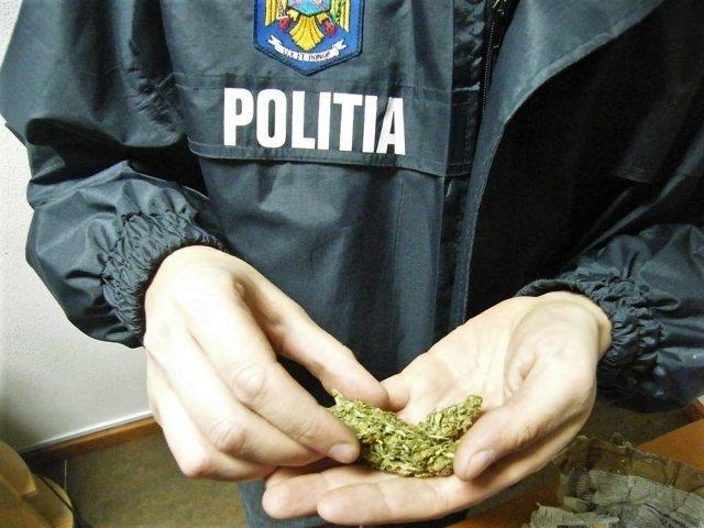 O tonă de canabis, descoperită într-un microbuz, la Giurgiu